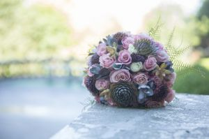 FlowersintheMorningLight4864.jpg