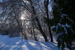 Snowy%20Day.jpg