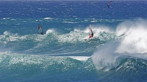 Surf Riders  2 copy-c82-c11.jpg